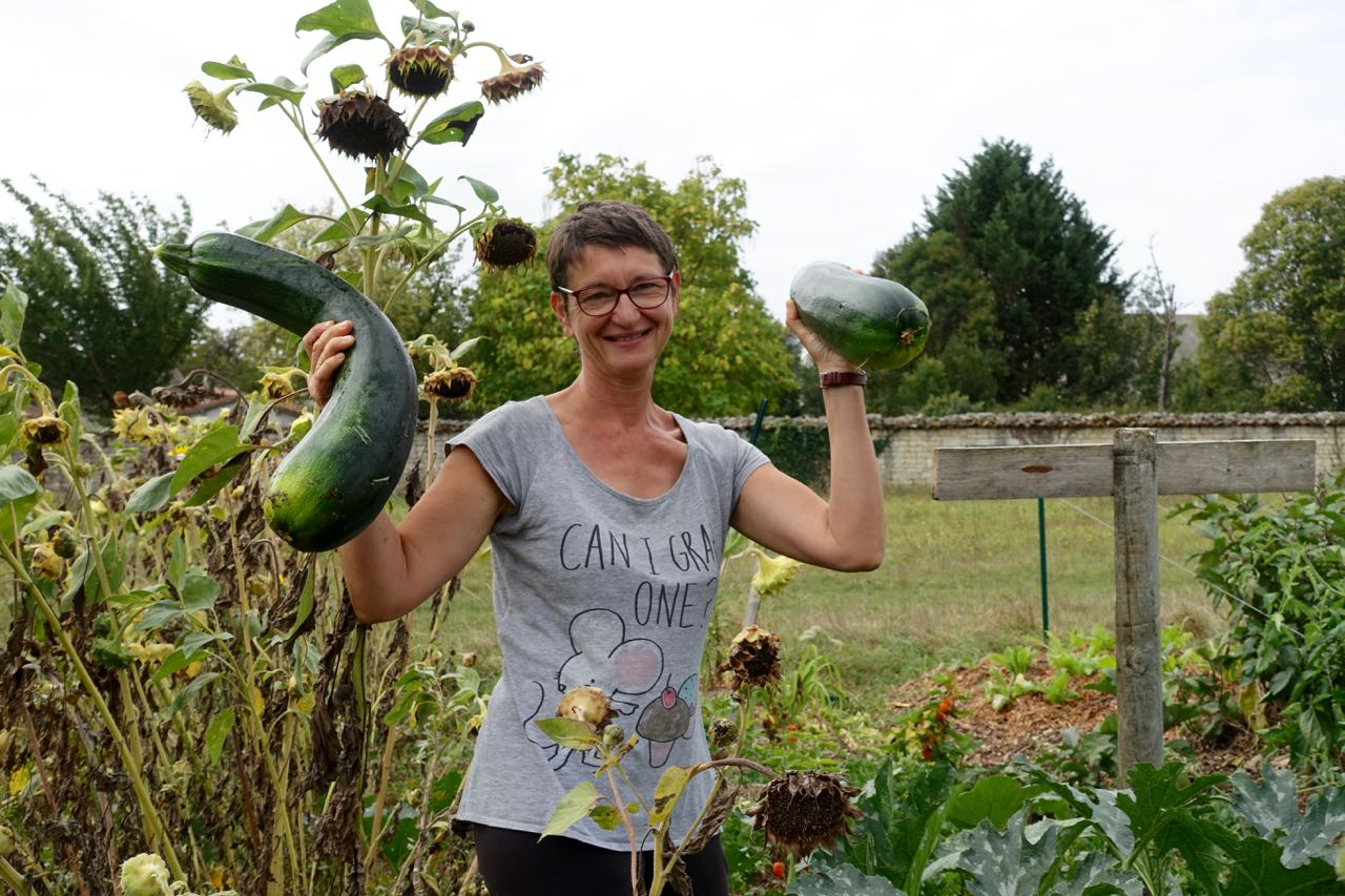 Big Zucchinis, wwoofing in France